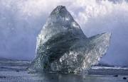 walvisstaart van ijs