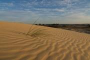 zand kootwijk