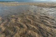 strand bij de Hors